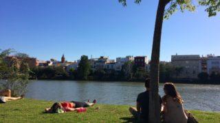 セビリアのグアダルキビル川沿いの公園