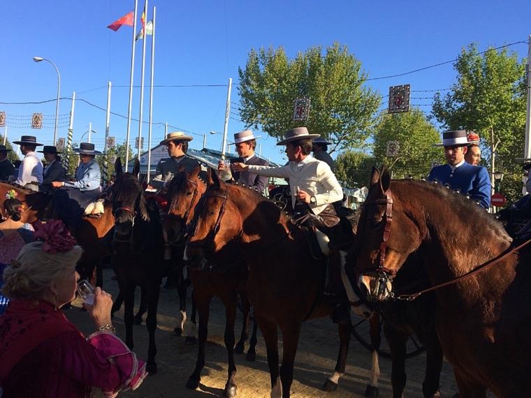 セビリアの春祭り2018の馬