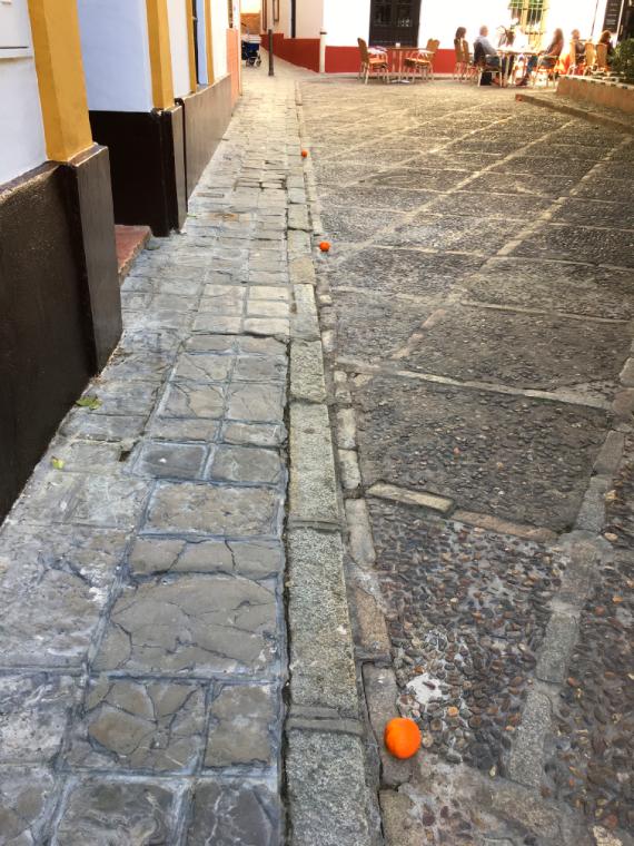 セビリアの通りに落ちているオレンジの実