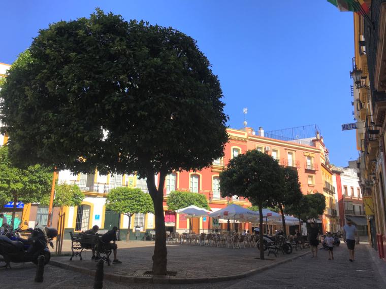 セビリアのサン・アンドレス広場
