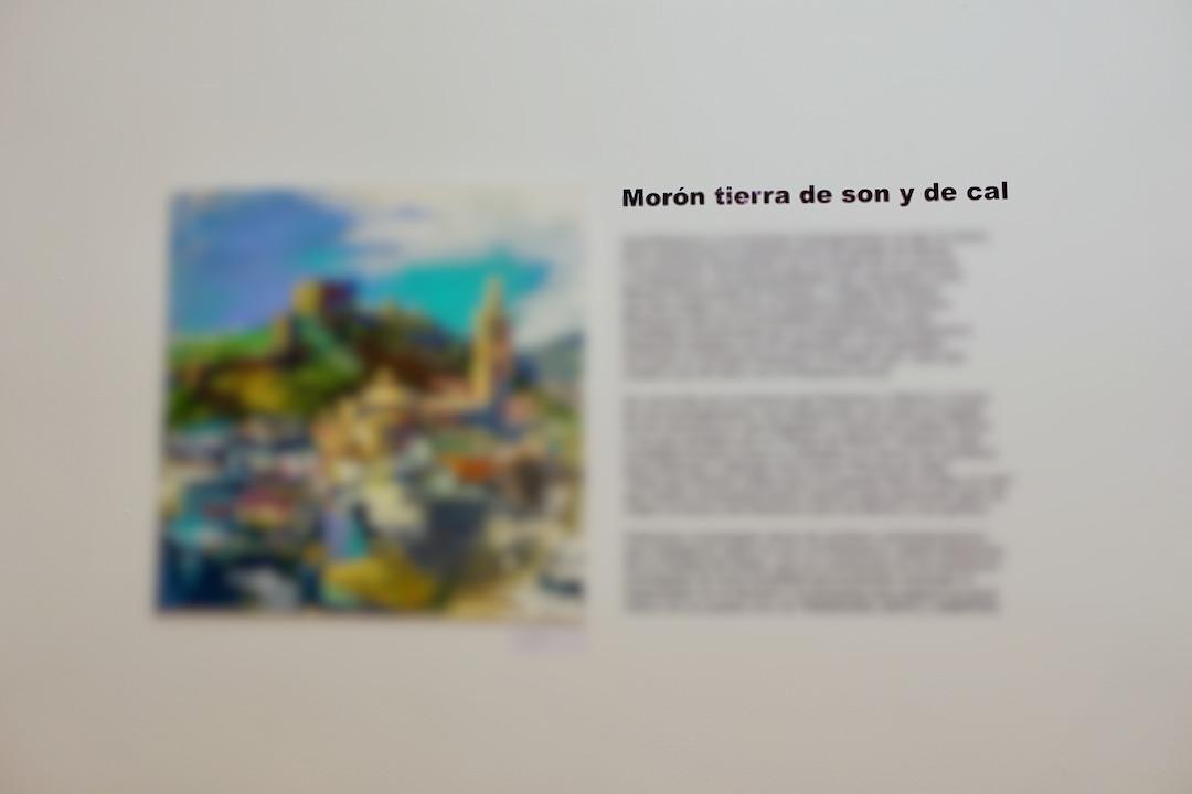 セビリアのcasa de provincia モロンとフラメンコに関する展示会